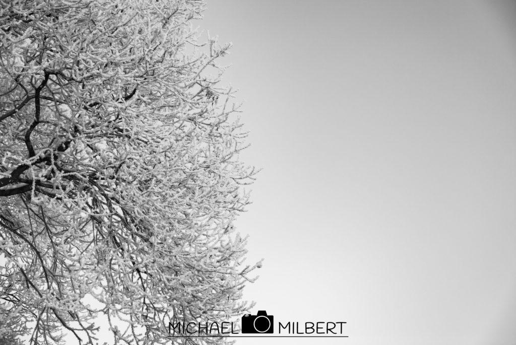 - WINTER -